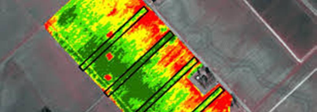satelite imagee